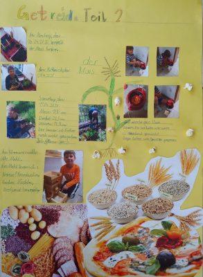Lernplakat Getreide 2