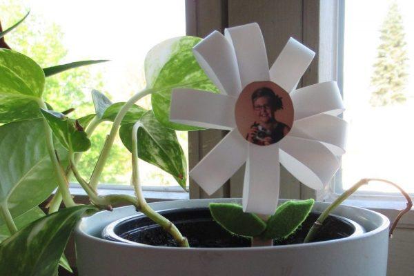 Blumensteckerblume